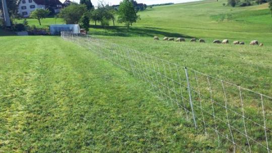 Schafnetz Herdennetz turbomax high energie, 90cm, 50m