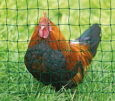 Geflügelnetz PoultryNet grün, nicht elektrifizierbar