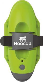 Moocall Abkalbmelder