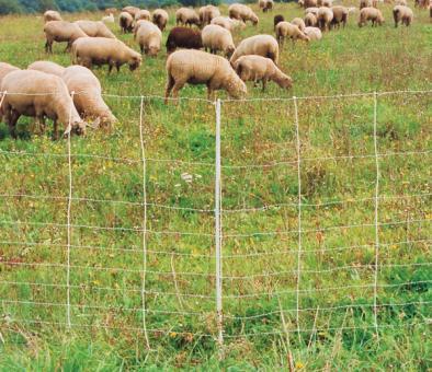 WolfNetz Wolfsabwehrnetz für Schaf-und Ziegen turbomax extra, 105 cm, 50 m