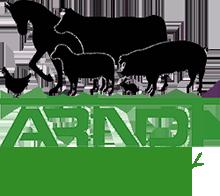 Arndt Logo